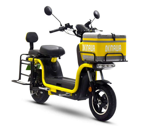 Electric Dual Scooter
