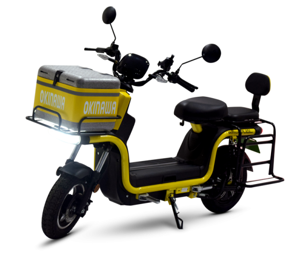 Dual Electric Scooter